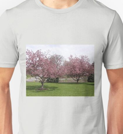 The cherry trees in full bloom Unisex T-Shirt