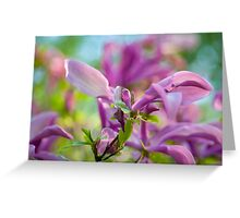 Abstract Art Of Magnolia Flower Greeting Card