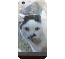 Let Me In iPhone Case/Skin