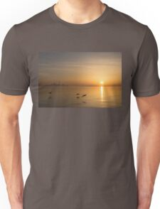 Golden Morning Flight Unisex T-Shirt