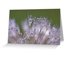 On a Dewy Morning Greeting Card