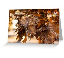 Honey Colored Honeycomb Ice Greeting Card