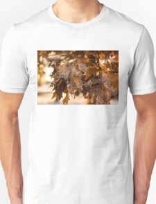 Honey Colored Honeycomb Ice Unisex T-Shirt