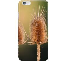 Pair of Teasels iPhone Case/Skin