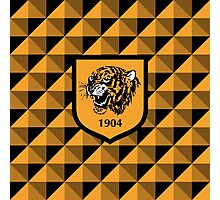 Hull City Association Football Club Photographic Print