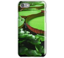 Tundra Lily iPhone Case/Skin