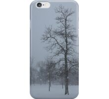 Whispering Snowflakes iPhone Case/Skin