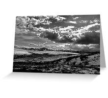 Denali National Park (BW) Greeting Card