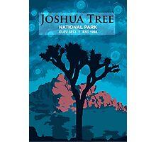 Joshua Tree National Park. Photographic Print