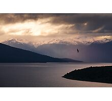 Lake Te Anau Photographic Print