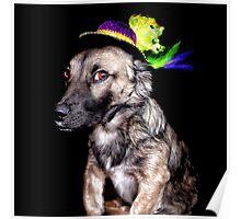 Mardi Grad Pup 2 Poster