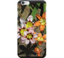 Wondrous iPhone Case/Skin