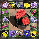 Sunshine and Showers Floral Collage by BlueMoonRose