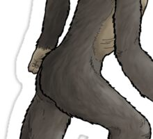 Run, Australopithecus, Run! Sticker