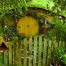 Hobbiton2 by Barbara  Brown