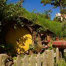 Hobbiton5 by Barbara  Brown