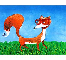 Clever fox Photographic Print