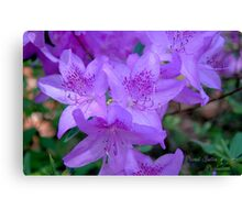 Flower Cluster Canvas Print