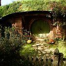 Hobbiton 8 by Barbara  Brown