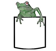 Green Pocket Frog Photographic Print