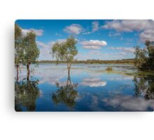 Reflective Wetlands Canvas Print