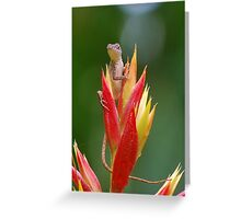 Lizard lookout 2 Greeting Card