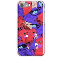 Wrens and Rosellas Delight! iPhone Case/Skin