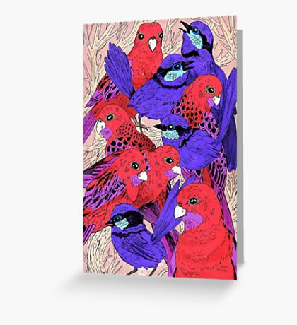 Wrens and Rosellas Delight! Greeting Card