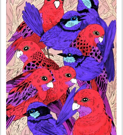 Wrens and Rosellas Delight! Sticker