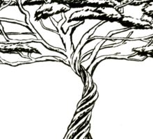 Whistling Thorn , Zen Bonsai African Tree Black and White Illustration Sticker