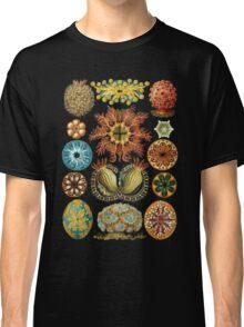 Haeckel illustration Classic T-Shirt