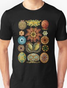 Haeckel illustration Unisex T-Shirt