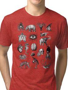 Cabinet of curiosities 2 Tri-blend T-Shirt