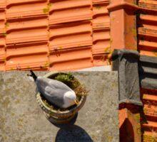 Sea Gull on a chimney Sticker