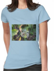 dead dandelion in the meadow Womens Fitted T-Shirt