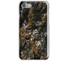 Textures of our Planet. 2 - Moss iPhone Case/Skin