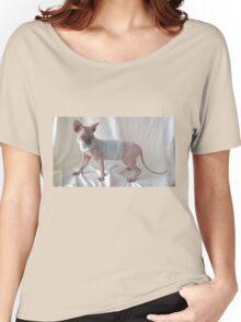 Choccolate sphynx cat whit light blue dress Women's Relaxed Fit T-Shirt