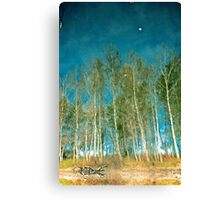 Beautiful summer in the forest. Reflection of birch in a lake Canvas Print