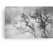 Winter Veins - Winter Series Canvas Print