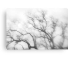 Winter Mist - Winter Series Canvas Print