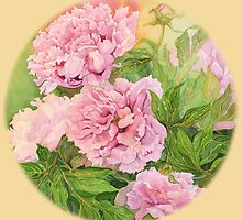 PINK PEONY ORANGE by Carol McLean-Carr