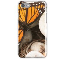 Viceroy Butterfly iPhone Case/Skin