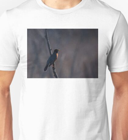 Signs of Spring - Robin T-Shirt
