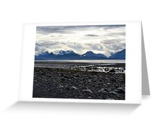 Gulf of Alaska Beach (Homer, Alaska) Greeting Card