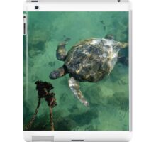 Galapagos Green Sea Turtle iPad Case/Skin