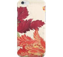 Vintage floral print on shabby white - Bright Tulips Flower iPhone Case/Skin