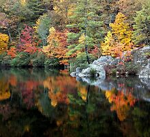 Trout Pond, West Virginia by vivsworld