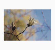 Dreamy Magnolia One Piece - Long Sleeve
