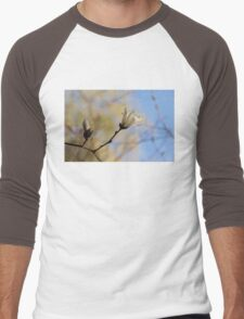 Dreamy Magnolia Men's Baseball ¾ T-Shirt