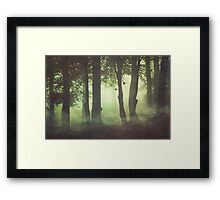 Wispy Forest Mists Framed Print